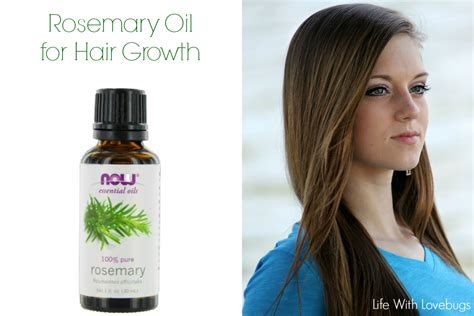does fish oil promote hair growth with pictures ehow rosemary oil for hair growth life with lovebugs