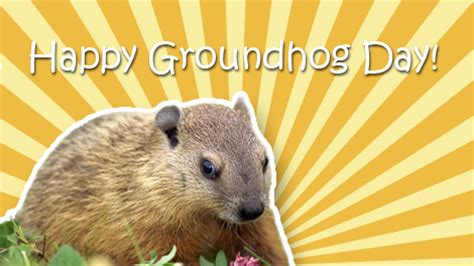 groundhog day hd popcorns happy groundhog day 2014 www pixshark images