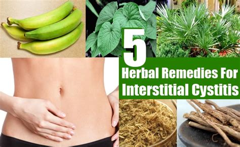 best cure for cystitis interstitial cystitis herbal remedies treatments and