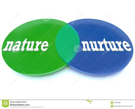 nature  nurture venn diagram stock photo image