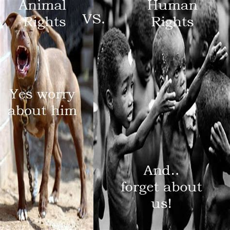 Human Rights Seeks To Halt Madonna Adoption 2 by Animal Rights Vs Human Rights My Works