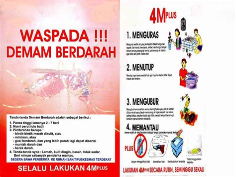 Merah 3m 02 tips mencegah dan menyembuhkan demam berdarah dengue