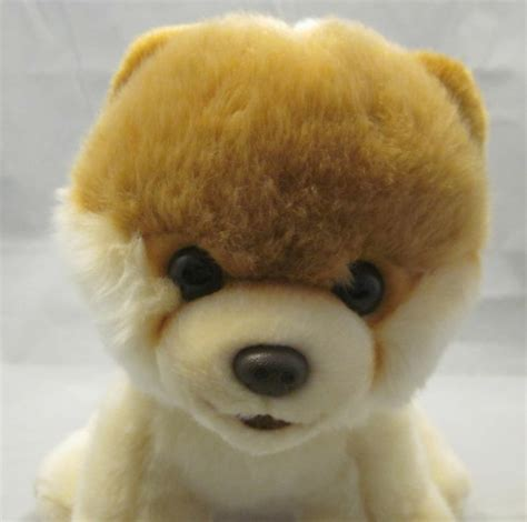 pomeranian stuffed animal gund boo worlds cutest pomeranian 10 quot 4029715 stuffed animal plush soft