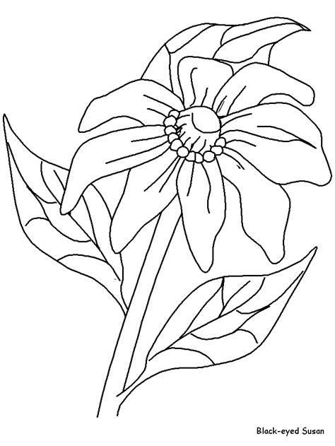 coloring pages of different flowers flower bouquet coloring sheets az coloring pages
