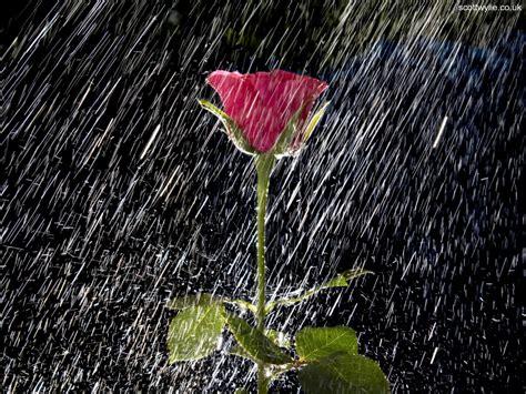 imagenes de lluvia wallpaper el bucle azul quot gotas quot del poema quot lluvia quot de federico