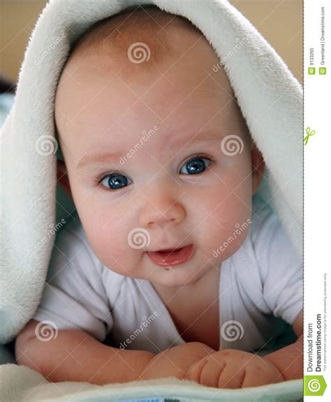 baby 4 months royalty free portrait of four months baby royalty free stock photo image 9133265