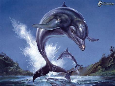 imagenes de amor animadas de delfines delfines animados