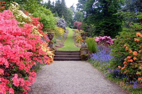 foto di giardino il giardino all italiana