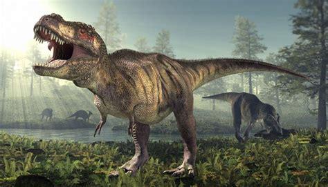los 10 dinosaurios mas grandes que existieron ecolog 237 a los diez animales prehist 243 ricos extintos m 225 s aterradores fotos