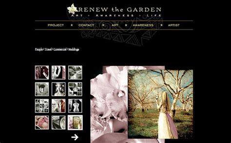 best web photo gallery artist gallery website design blue lotus mediablue lotus