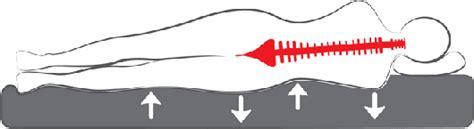 richtige matratze bei rückenschmerzen hilfe zu so finden sie die richtige matratze bei