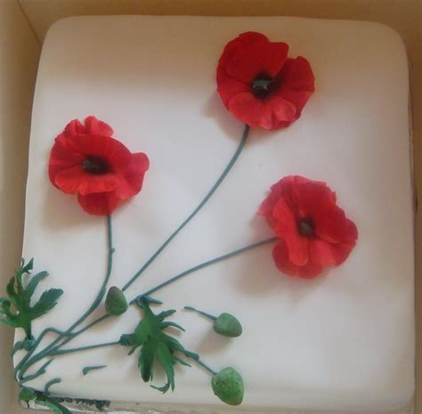 17 best images about cake decorating ideas poppy rememberance cakes on pinterest mint
