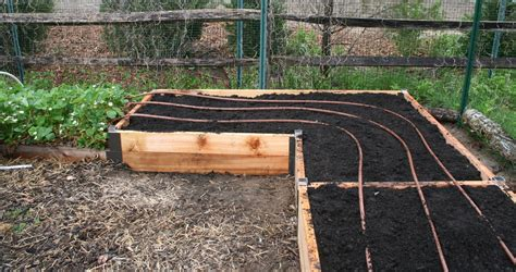 raised bed irrigation back by popular demand diy raised garden beds sunset