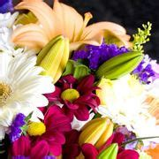 significato dei fiori lilium significato giglio significato fiori giglio linguaggio