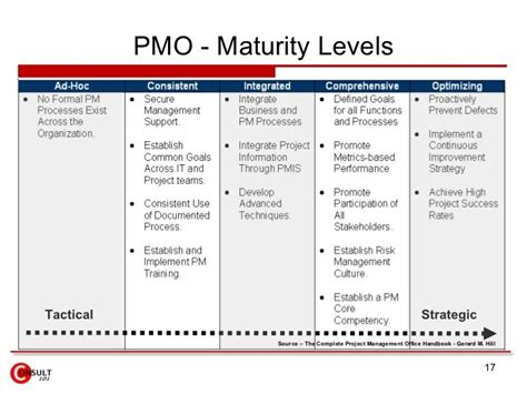 pmo terms of reference template pmo maturity levels tactical strategic project