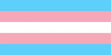 transgender colors awareness is not enough we need policy reform to better