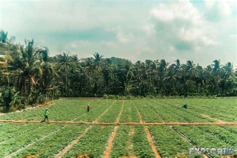 goodbye indonesia die zugfahrt von yogyakarta nach
