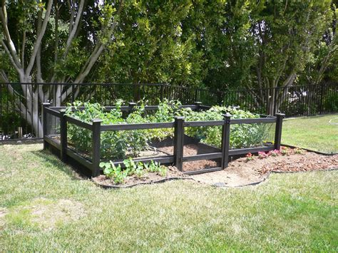 chain link fence enclose vegetable garden fences