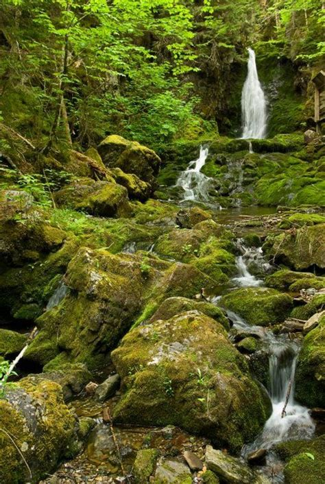 dickson falls in fundy national park new brunswick canada 57 best images about feels like home on pinterest saint