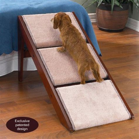 dog stairs for couch furniture what is the best angle for a dog r pets
