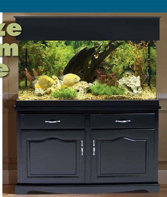 aquarium stands and canopies showcase your aquarium with