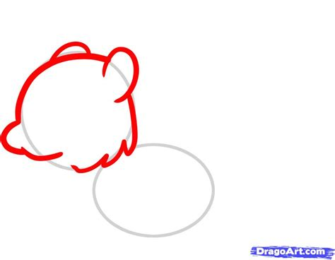 how to a for squirrel how to draw a squirrel for step by step animals for for free