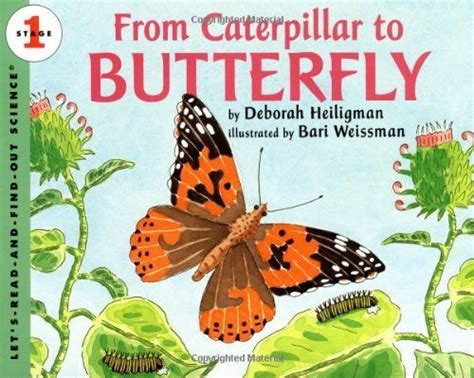 rocks butterflies books 54 best children s books on nature science images on