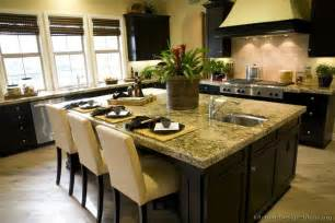 Ideas For The Kitchen Modern Furniture Asian Kitchen Design Ideas 2011 Photo