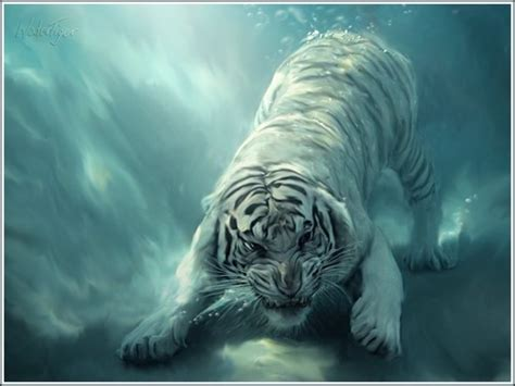 cool chinese  year  tiger theme wallpapers web