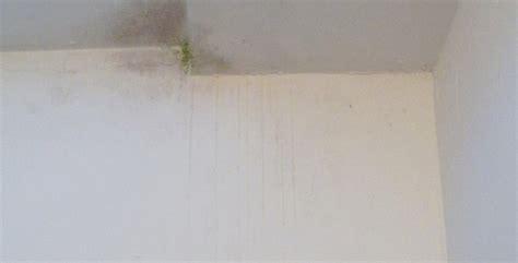 infiltrazioni soffitto infiltrazioni acqua soffitto semplice e comfort in una