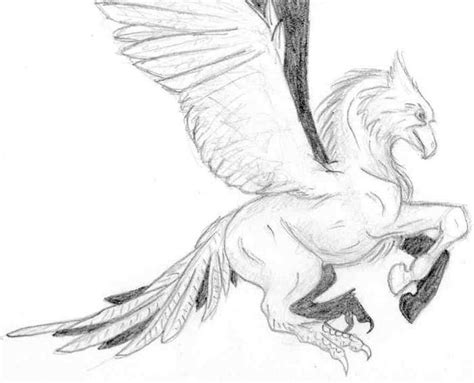 hippogriff coloring page hippogriff by brokenrapture781 on deviantart