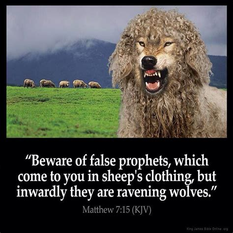 in sheep s clothing all about covert narcissists books 26 best images about wolf in sheep s clothing on