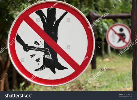 do not cut the tree to get the fruit do not cut tree sign stock photo 57786130