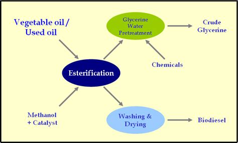 Phd Thesis On Biodiesel Pdf by Guide To Essay Writing Of Adelaide Biodiesel