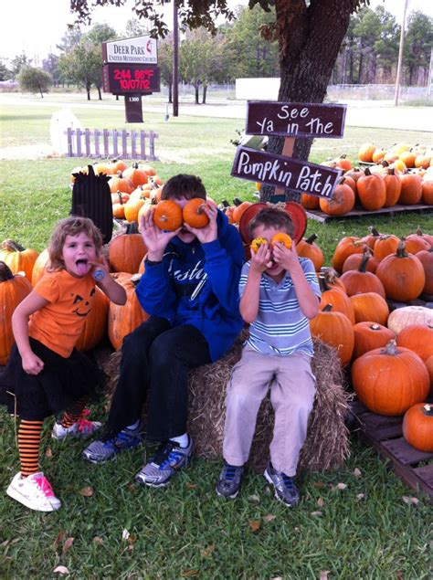 traditions for families family traditions in the fall a renaissance