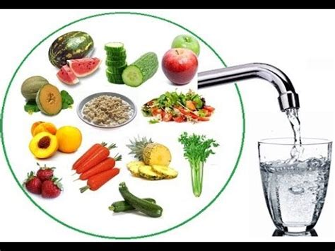 Keep Your Cing Food Cool by ड यब ट ज म इन ब त पर जर र कर ग र Healthy Zindagi