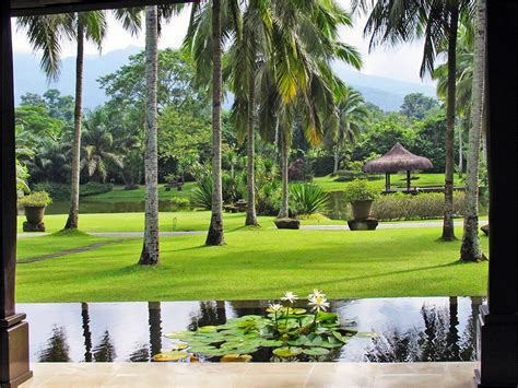 The Farm Detox Philippines by 6 Detox Resorts To Visit For A Healthy Start To The Year