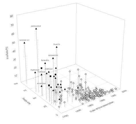 pattern analysis description bumble bees
