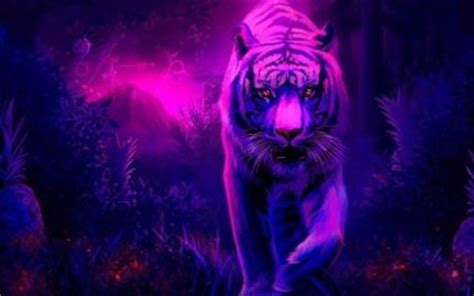 imagenes mitologicas hd 1273 tiger hd wallpapers background images wallpaper abyss