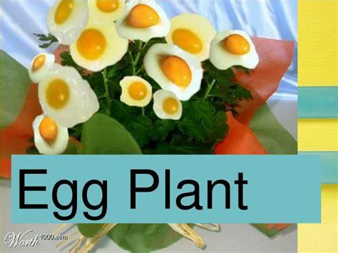 visual pun egg plant ppt visual puns powerpoint presentation id 2585298