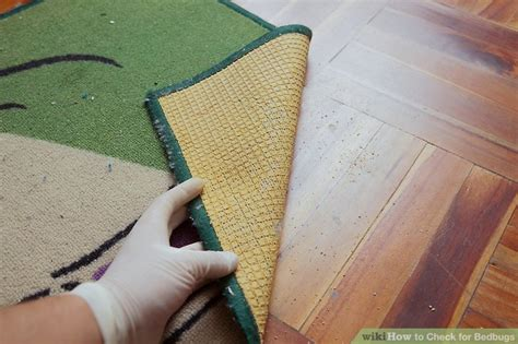 how to check a couch for bed bugs how to check for bedbugs with pictures wikihow