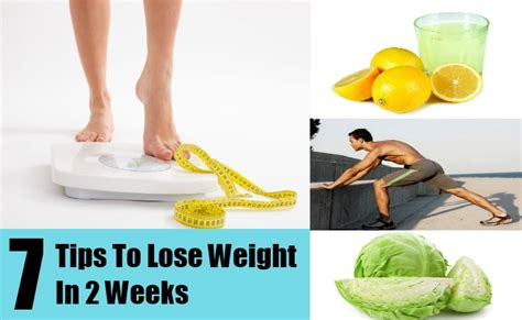 How To Shed Weight In 2 Weeks by How To Lose Weight Easily In 2 Weeks