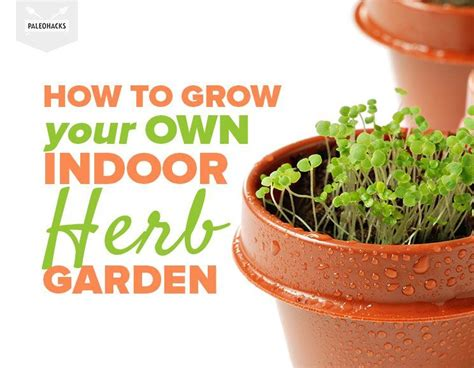 how to make your own indoor herb garden pinterest picks weekly round up gather