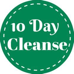 Dr Oz 30 Day Detox Manual by Best 25 2 Day Cleanse Ideas On 3 Day Detox