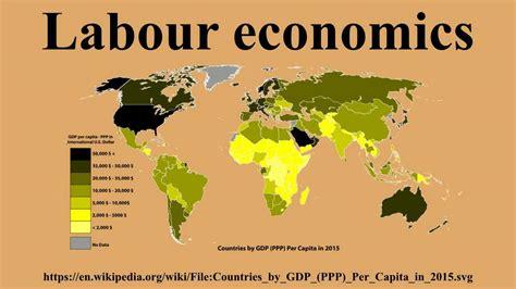 Labour Economics labour economics