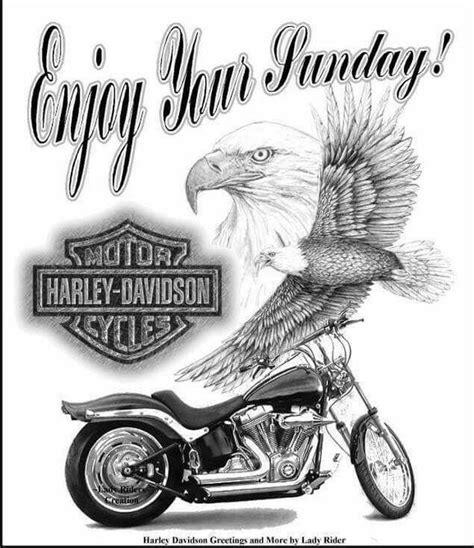 enjoy  sunday motorcycles pinterest harley davidson  motorcycle art
