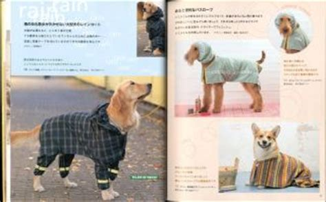 dog clothes pattern book bonnet girl patterns of the past pattern book applique