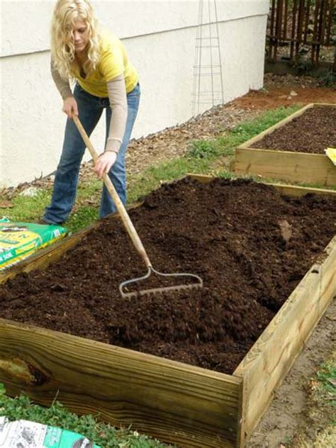 how to build a easy raised bed bonnie plants