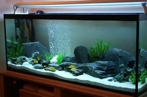 Aquarium Design Using Slate | slate aquarium google search aquariums fish ideas
