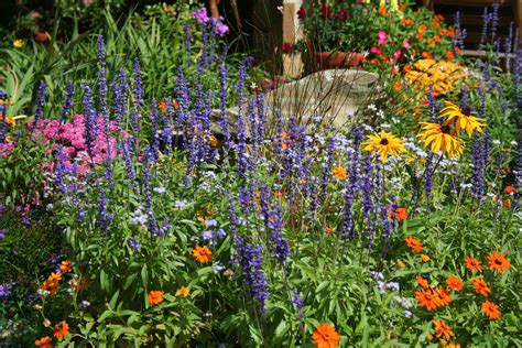 Garden Flowers Pictures Beautiful Flowers Images Of Flowers Garden
